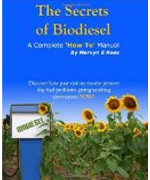 Buy The Secrets of Biodiesel through Amazon.com